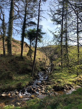 Doarlish-Cashen Loop Near Glen Maye 2019