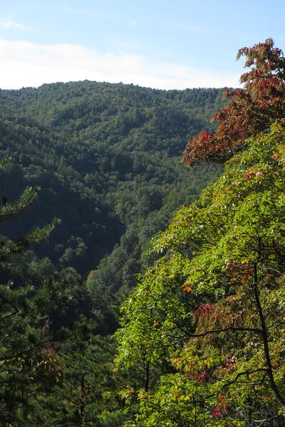 Jacob Fork River Gorge Overlook - 1,900'