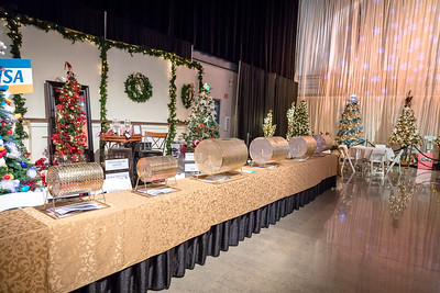 Holiday Party: Safeway Providence Festival of Trees - Medford