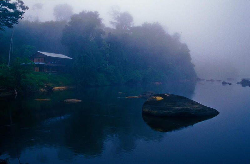 Suriname-6.jpg