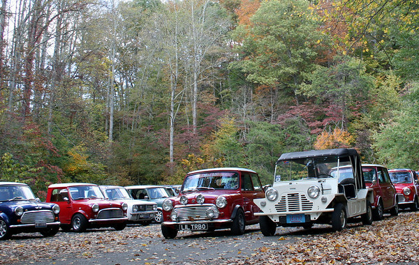 Mini Coopers in Unicoi County