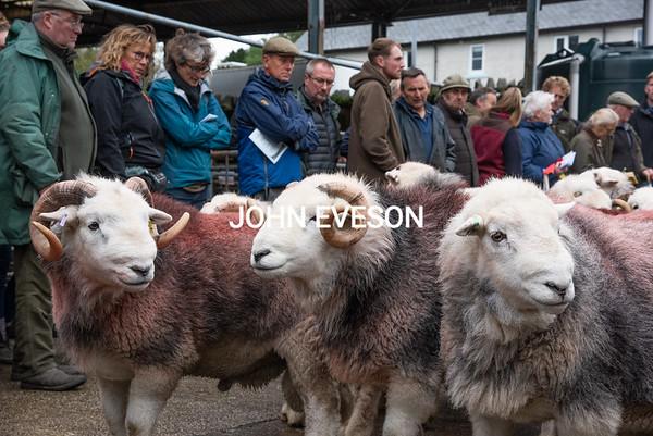 Livestock sales 2020