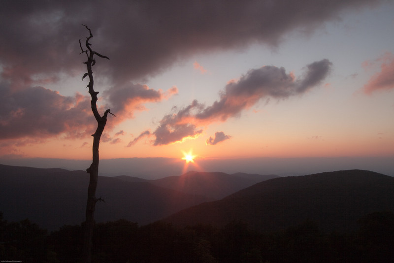 Star Sunrise in the Shenandoah National Park