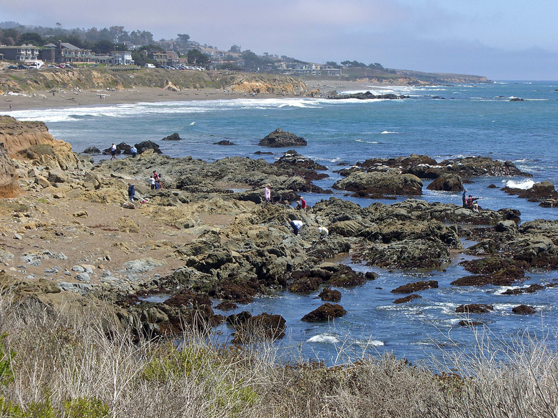 Moonstone Beach and houses