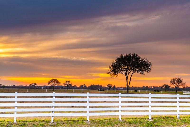 2015_3_13 Sunset on Telge-6568.jpg