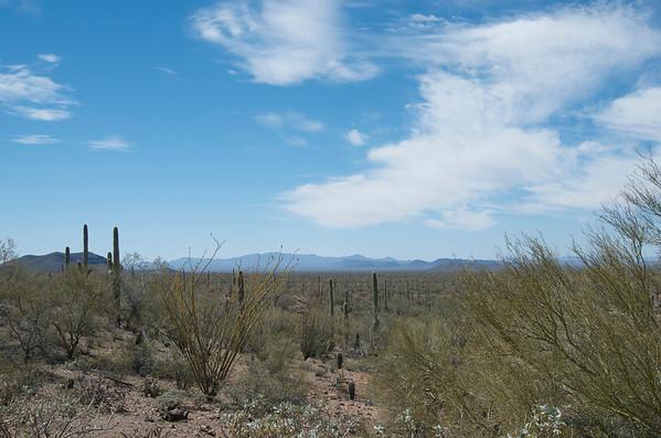 Along the Arizona border