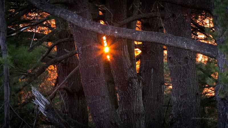 Sunset at Maple Ridge - April 13, 2013 Tall Pine State Preserve, Mantua, New Jersey