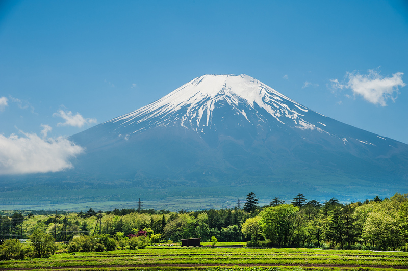 Mt Fuji in summer. Editorial credit: Srinil / Shutterstock.com