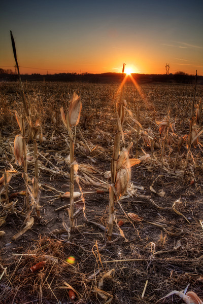 Harvest Sunset_tonemapped.jpg