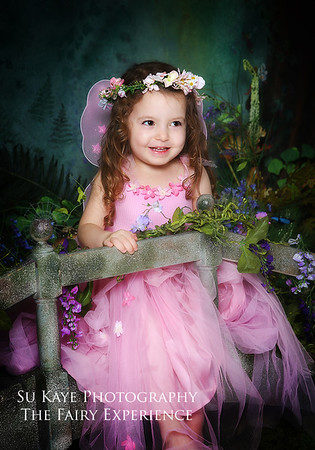 The Fairy Experience