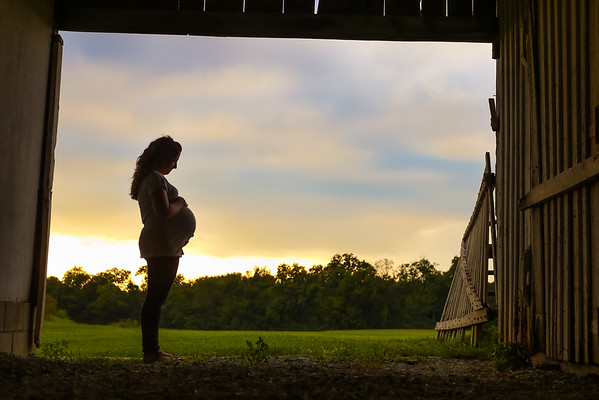 Megan Berg's Maternity Photos