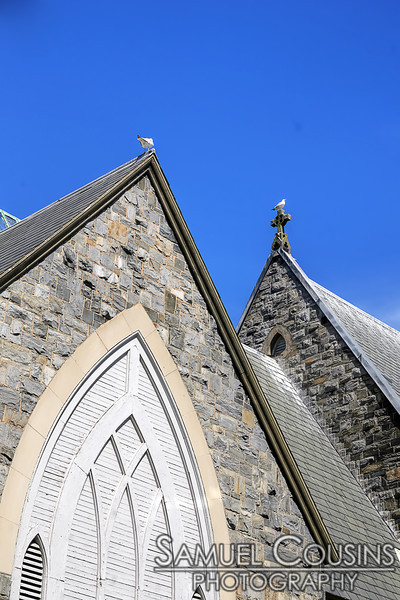 Seagulls resting on the roof of St John's