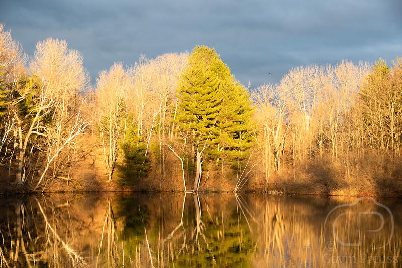 West Stockbridge Pond-7928.jpg