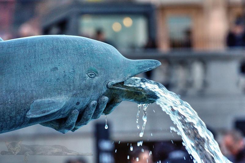 Trafalgar Square - Fountain