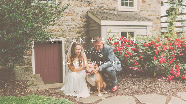 MEGAN + AARON ////// LAKEVIEW FARMS