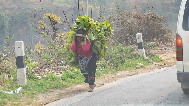 190413-085331-Nepal India-6609.jpg