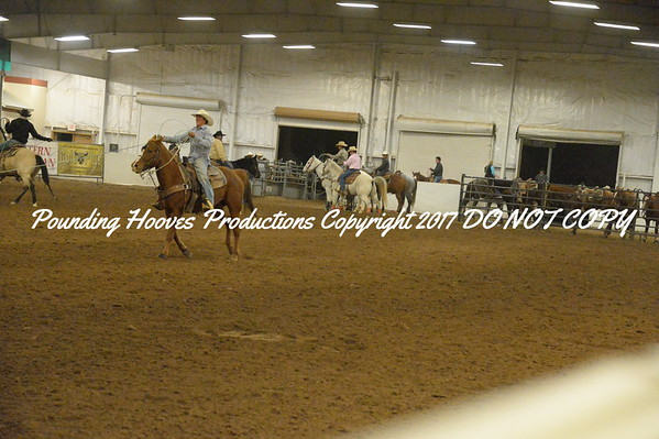 All photos for the Youth Roping