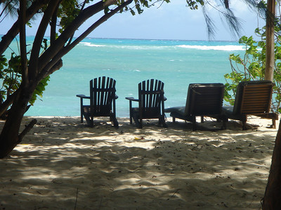 Second Honeymoon (Denis Island, 17 June 2007)