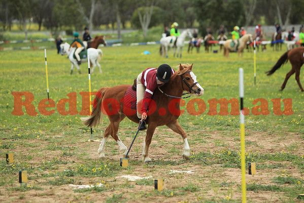 2014 09 06 PCAWA Active Riding Champs Qualifier Game 1 Stick Pegging