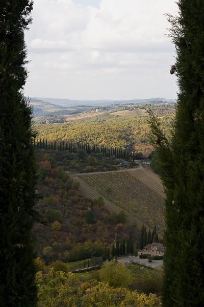 Countryside surrounding Radda in Chianti