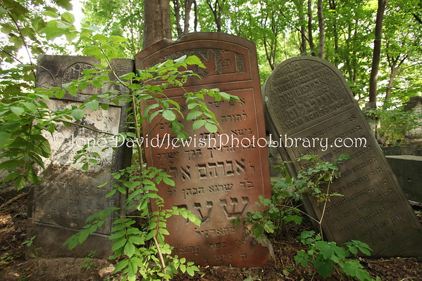 Cemeteries *** See PHOTOS in MENU BAR for All HHJPL Photos ***