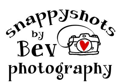 About Bev