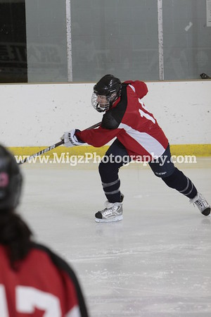 2012 Greater Buffalo Senior Hockey Invitational