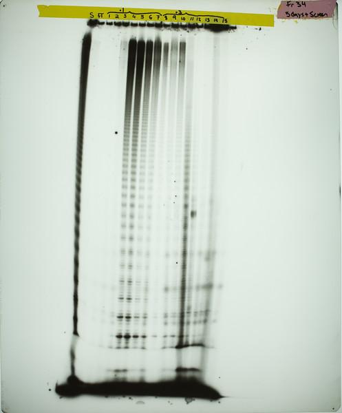 CWG-07-012 Diagnostic Film