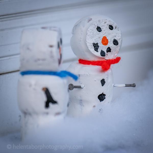 Winter Wonderland daytime-56.jpg