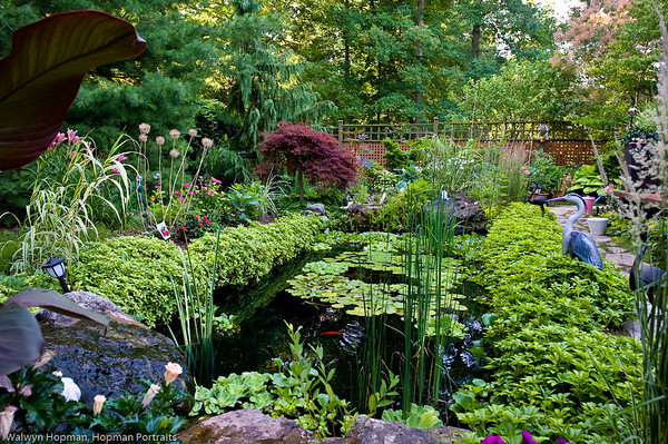 Horticultural Society Garden Tour 2012