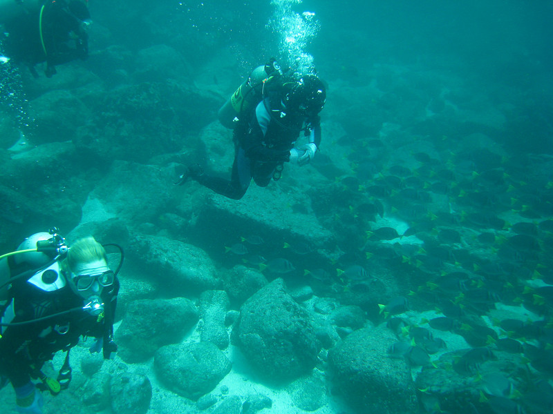 Diving in the Galapagos (343 of 392)