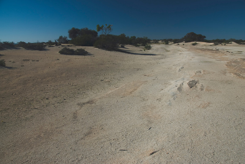Shell Dunes, Hamelin Pool - Shark Bay, Western Australia