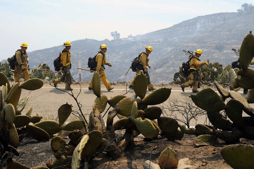 . Firefighters walk past charred cactus on Deer Creek Road in Ventura County, Friday, May 3, 2013. (Michael Owen Baker/Los Angeles Daily News)