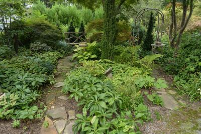 Elissa Steeves' Garden 10 August 2017