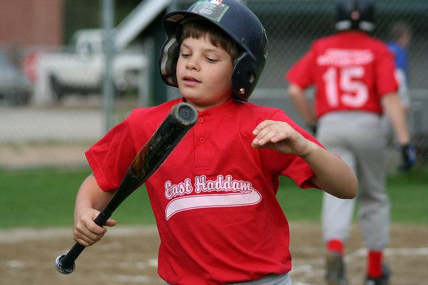 2006 Little League