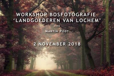 2018-11-02 Workshop bosfotografie (Dutch)