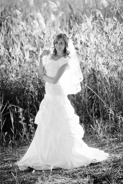 Amy Bridals 031bw.jpg
