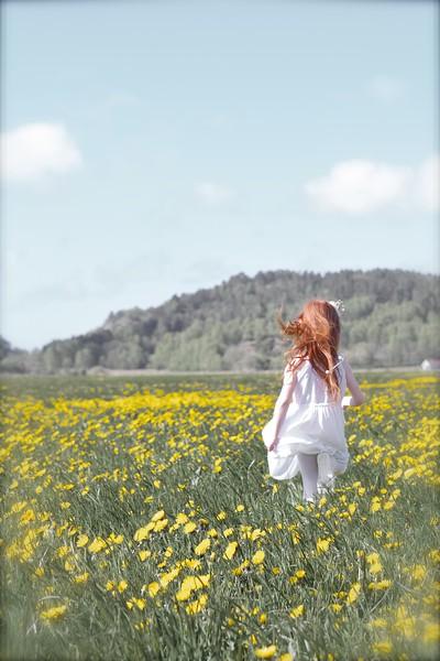 Fields of Happines