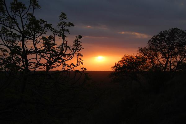 Kruger - Day 4 - Oct 16