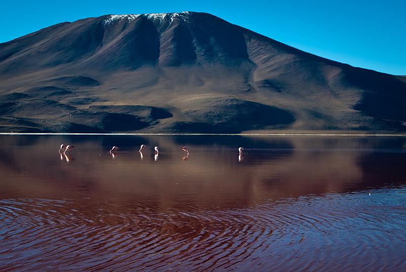 Tupiza to Uyuni 20120529 (244).jpg