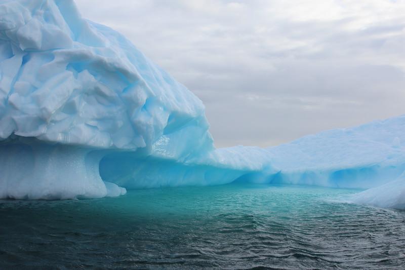 Antarctica 165.JPG
