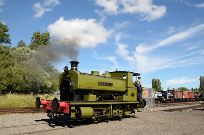 Chasewater Rosie