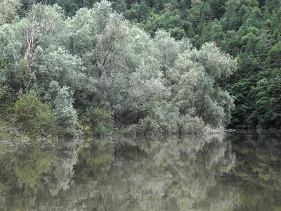 river 2017