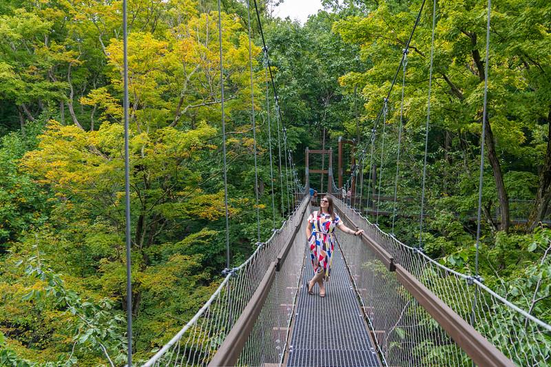 Canopy walk at Holden Arboretum