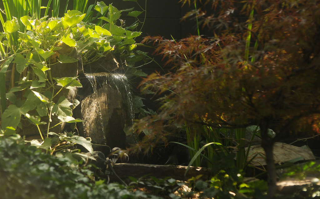 . A small waterfall in one of the Peters-Combs\' ponds catches the light of a summer afternoon. (Cyrus McCrimmon, The Denver Post)
