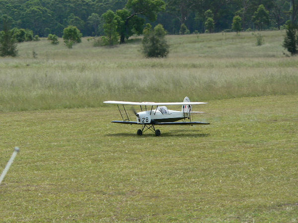 Laurie McCann's Stampe and another gracefull touch down.