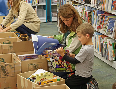 Patrick Henry Library Book Sale, October 2016