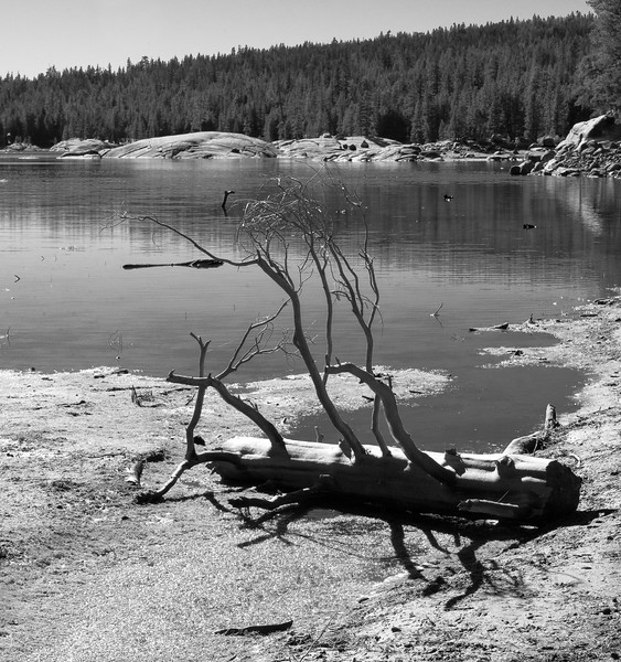 20171021-Lake Alpine-1738.jpg