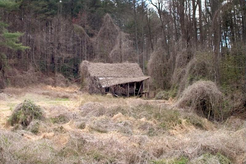 Same cabin in winter.
