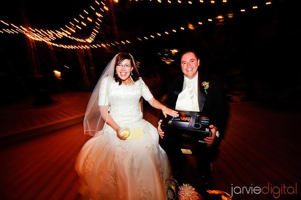 Alpine Utah Wedding Reception (Chronological)